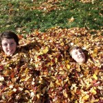 Fall obligatory roll in the leaves